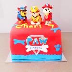 Paw Patrol cake square