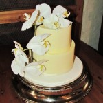White choc cake with chocolate collar and orchard